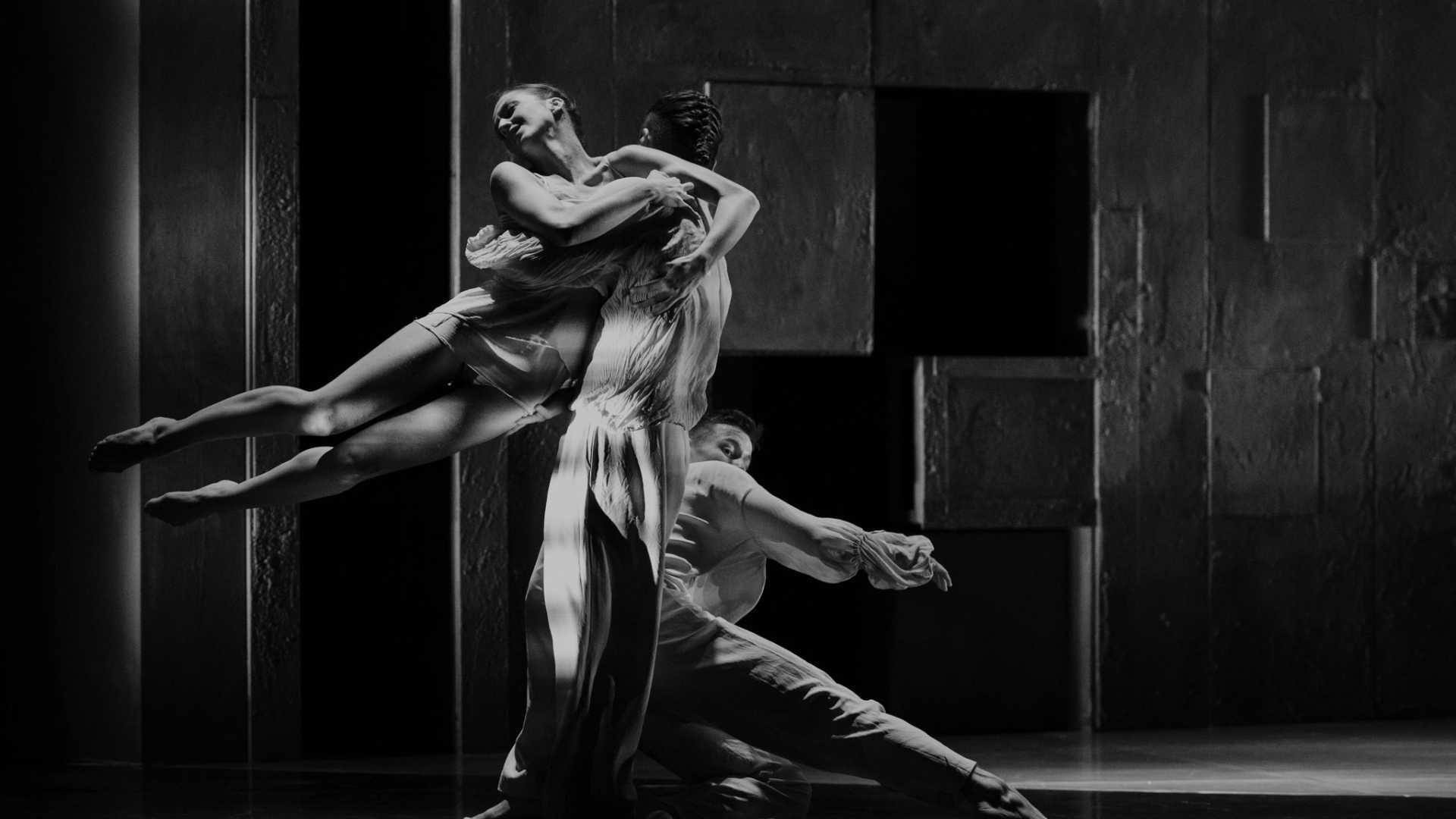 Danza: La mort i la donzella