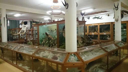 Sala de exposiciones de Ciencias Naturales