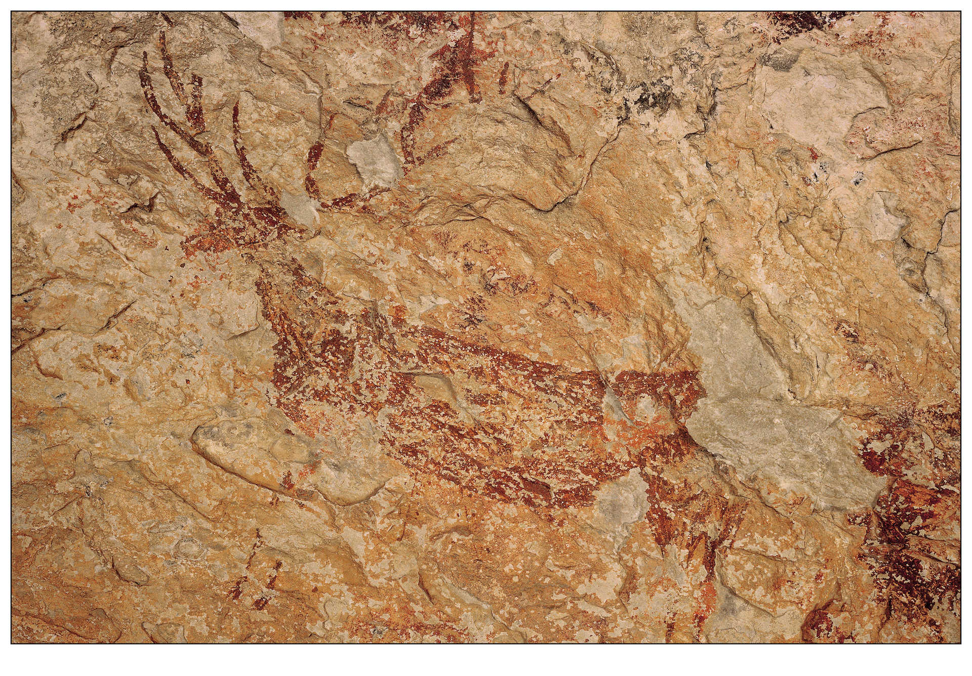 Guided tours of the cave paintings of La Sarga
