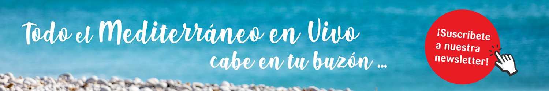 Newsletters de la Comunitat Valenciana