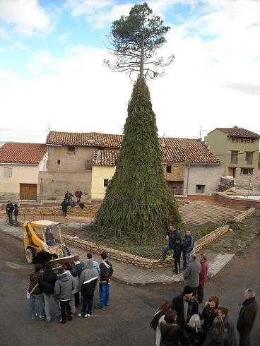 Festivitat de Sant Antoni Abad. Cinctorres