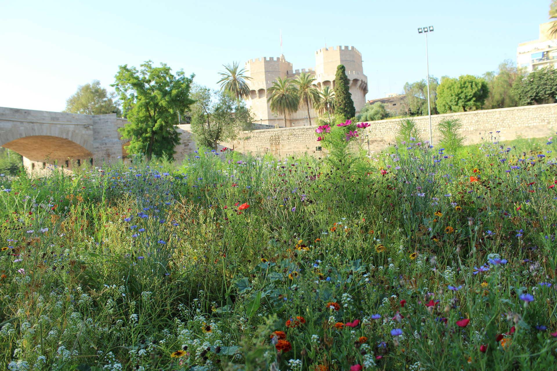 Jardines del río Turia