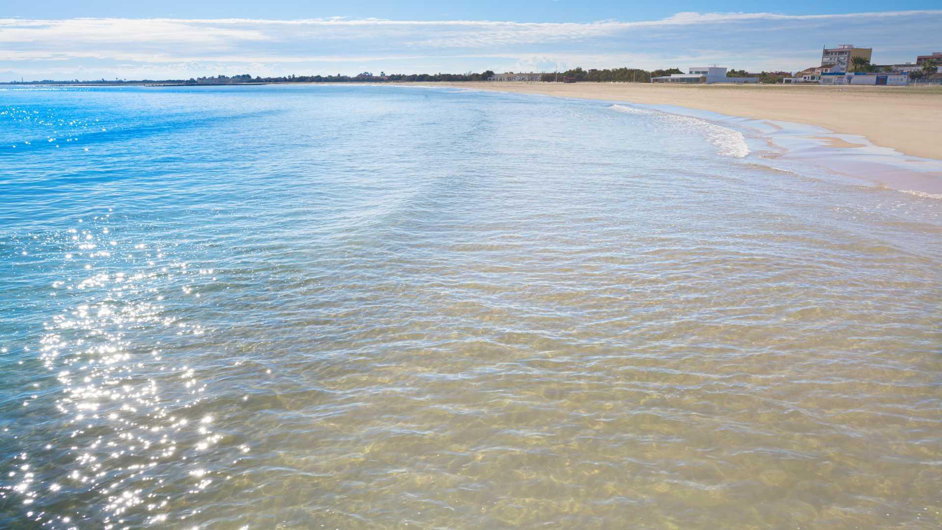 plages pet friendly region de valencia