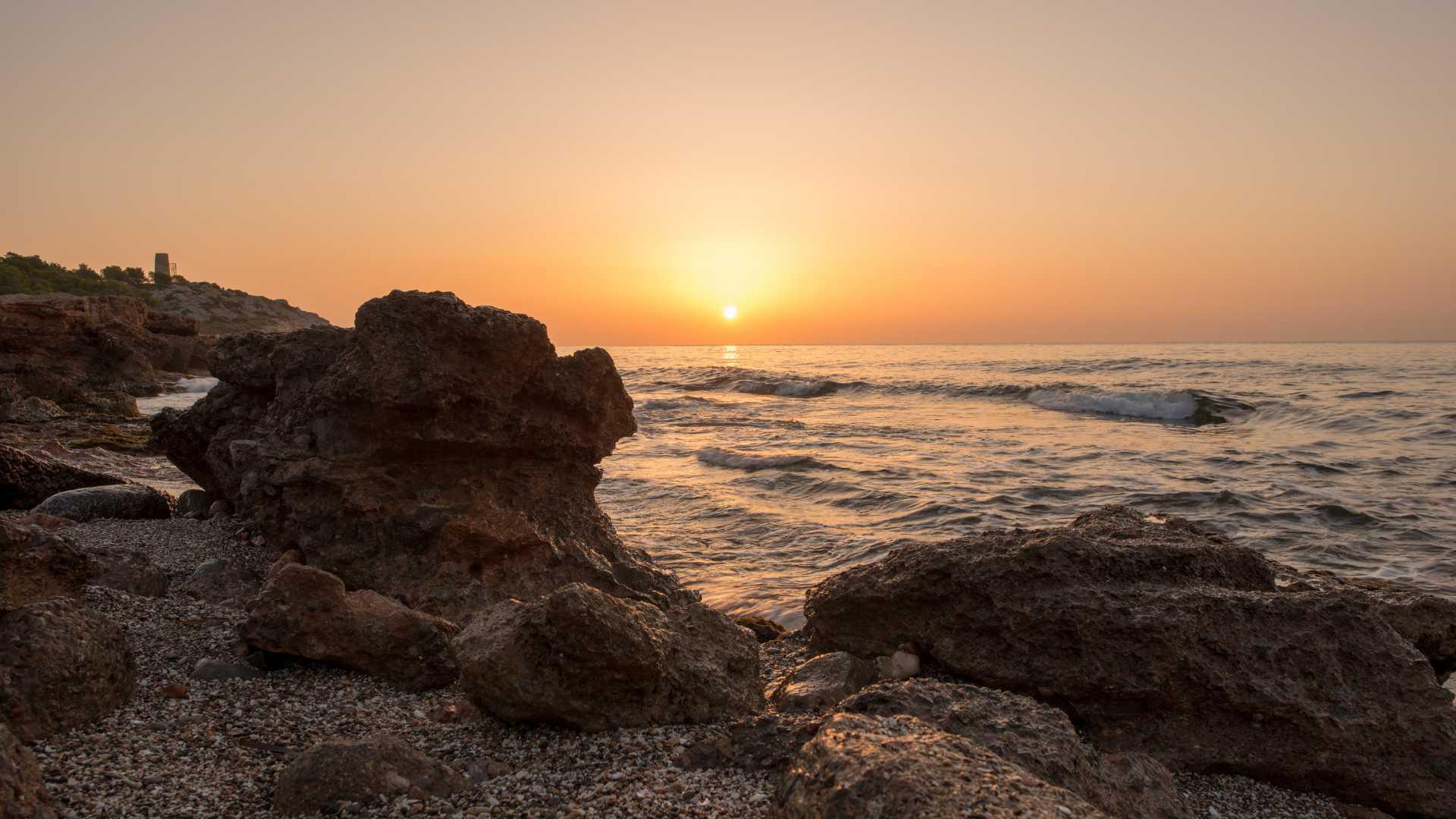 plages autorisees aux chiens valencia