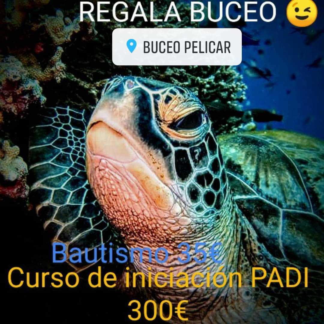 Buceo Pelicar (PADI)