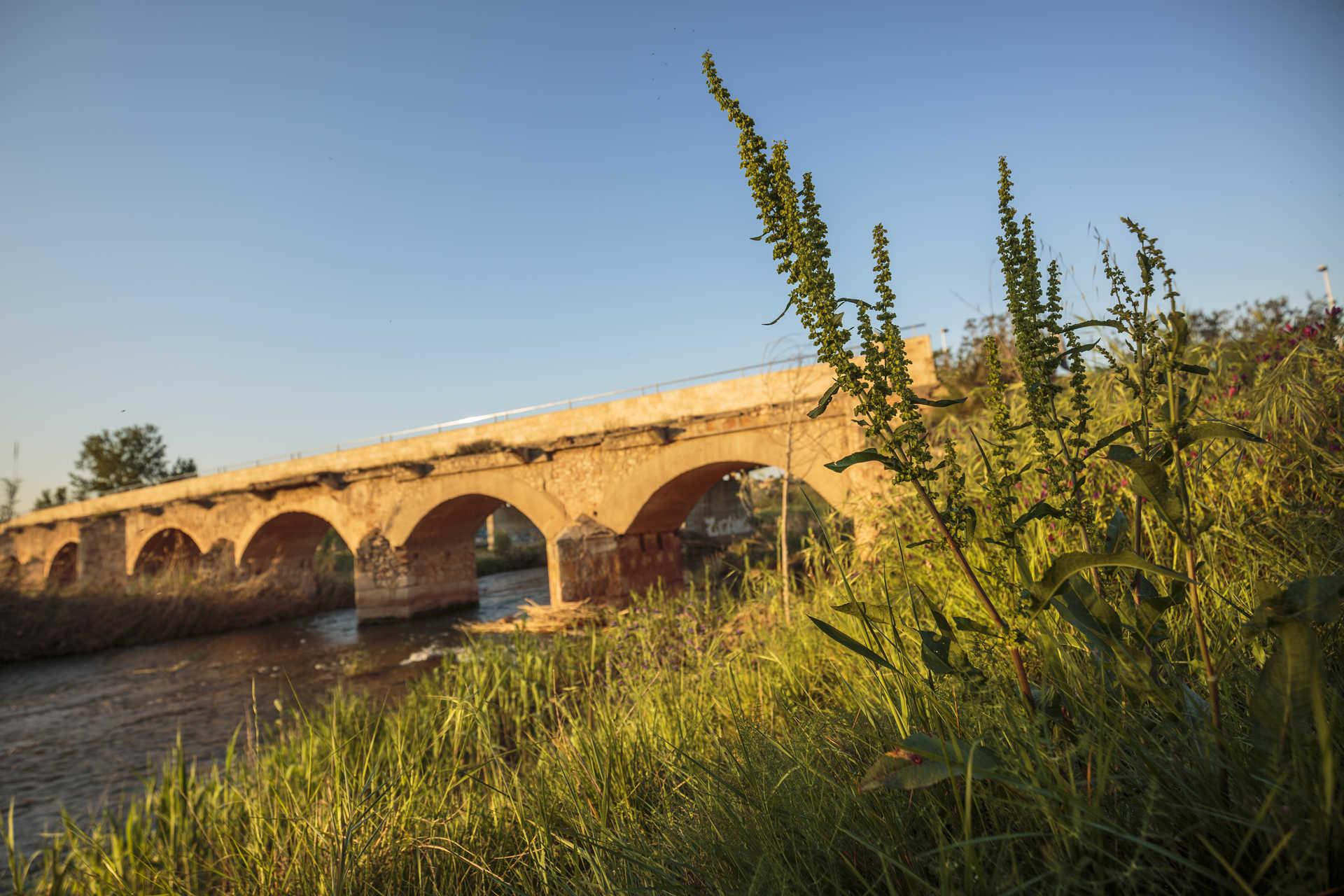 Puente Viejo o Puente del Conde 1761
