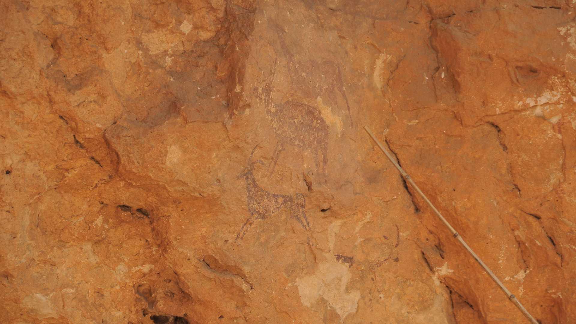 visitas macizo del caroig