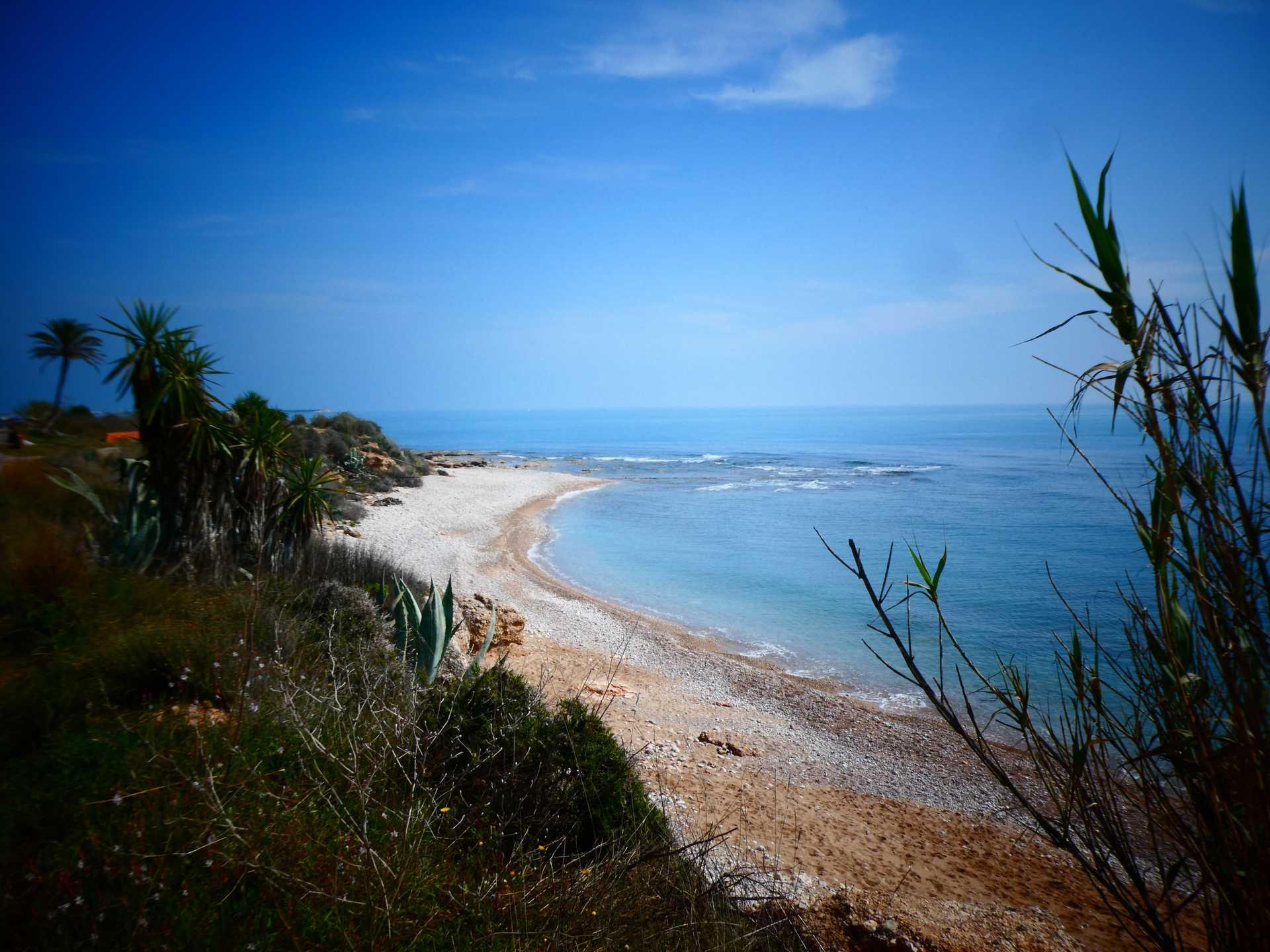 Playa d'Aiguaoliva (apta para perros)