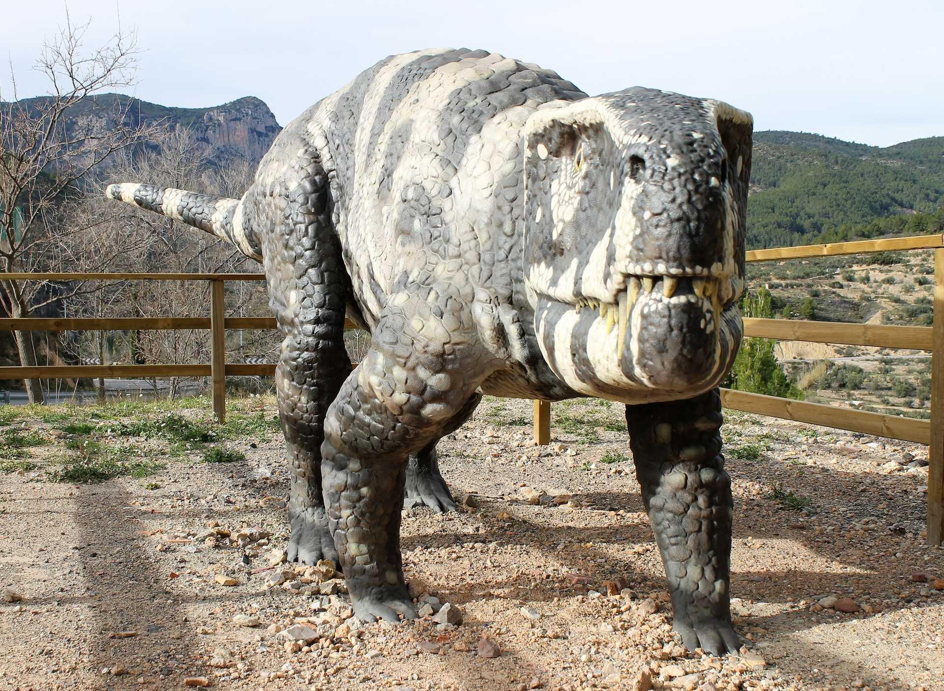+info Camins de dinosaures
