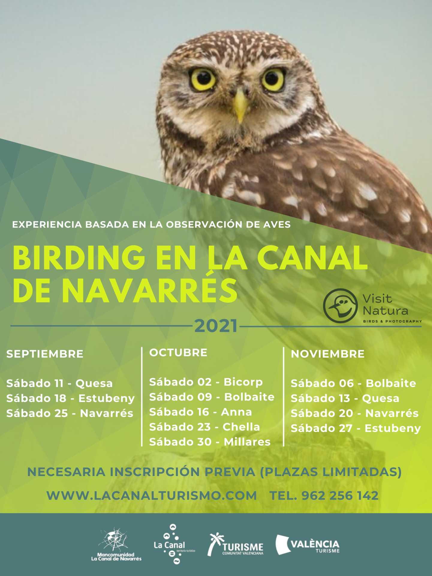 Birding en La Canal de Navarrés
