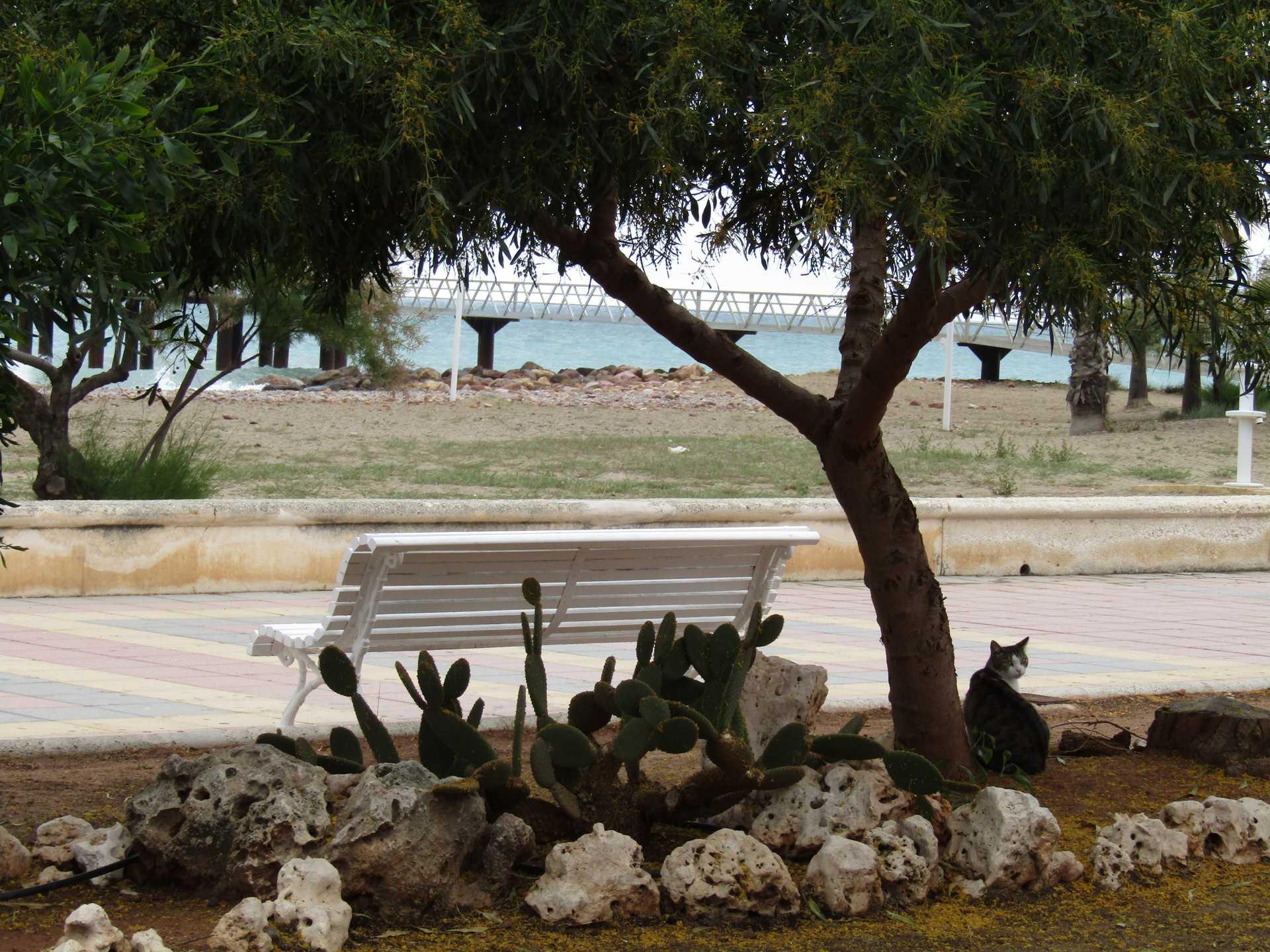 Promenade Maritime de Chilches