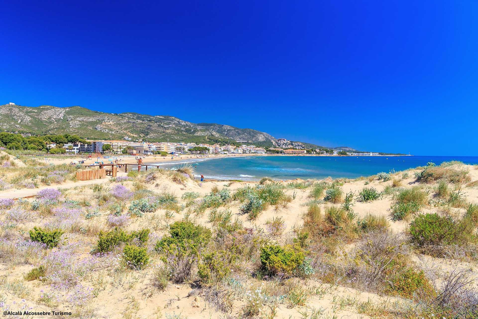Carregador Beach