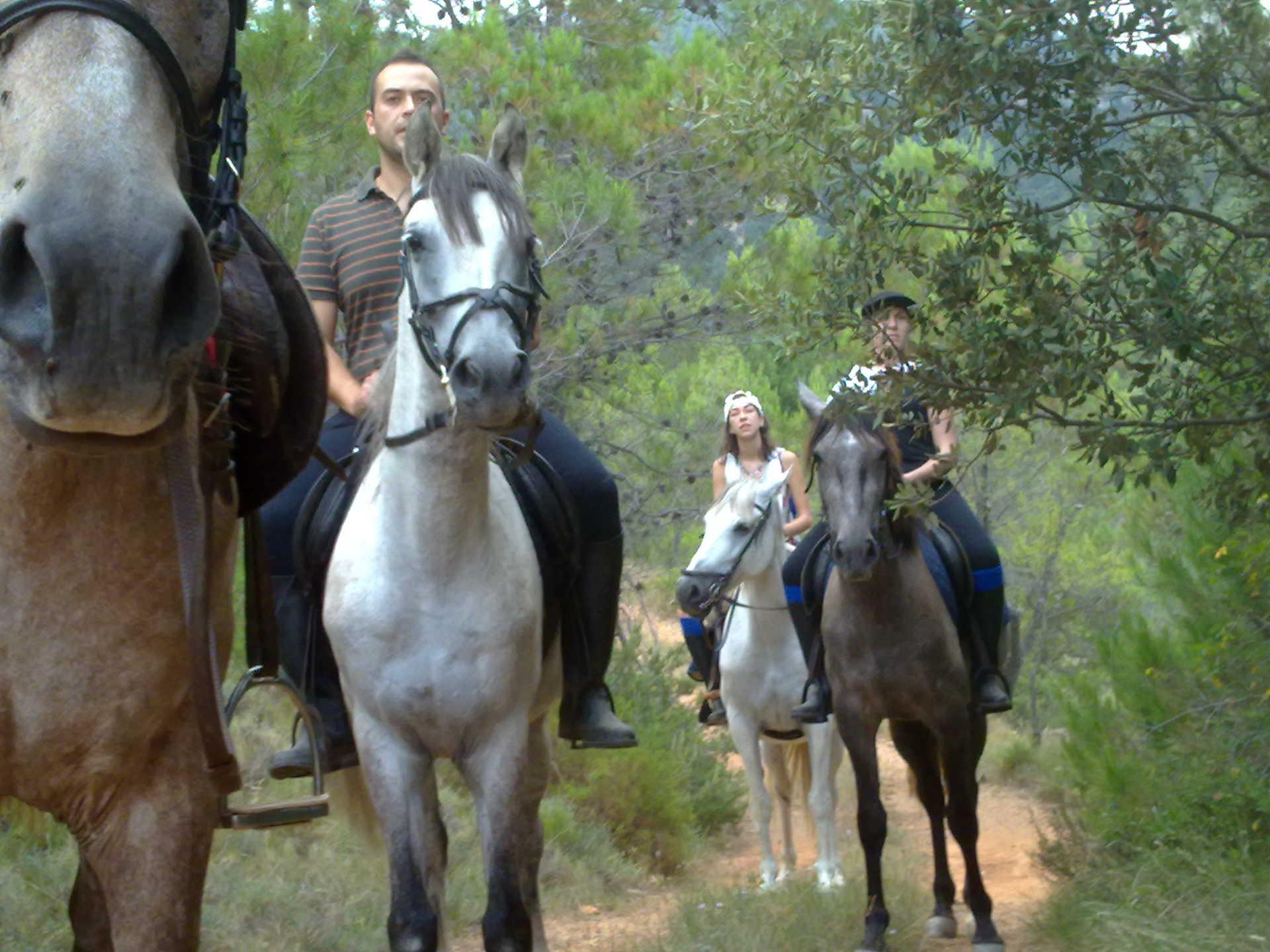 Rutas a caballo La Tinença