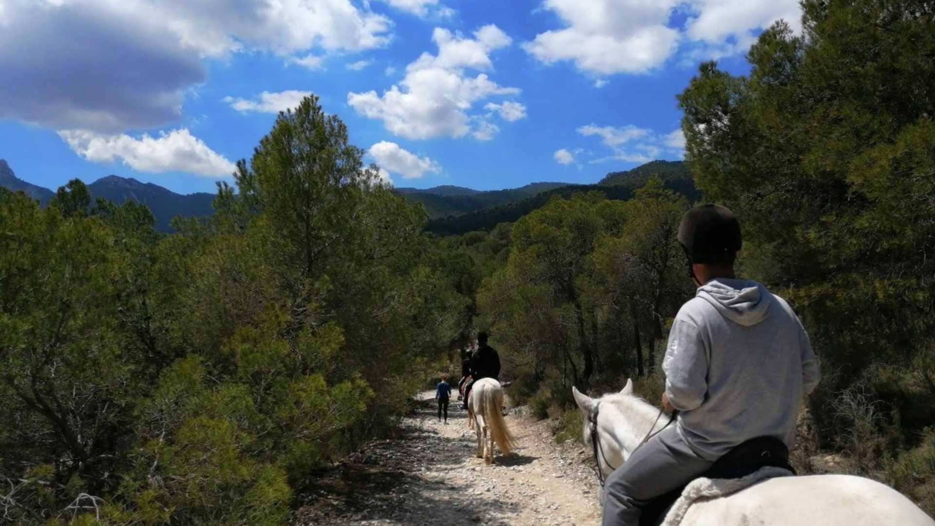 routen durch die berge alicante
