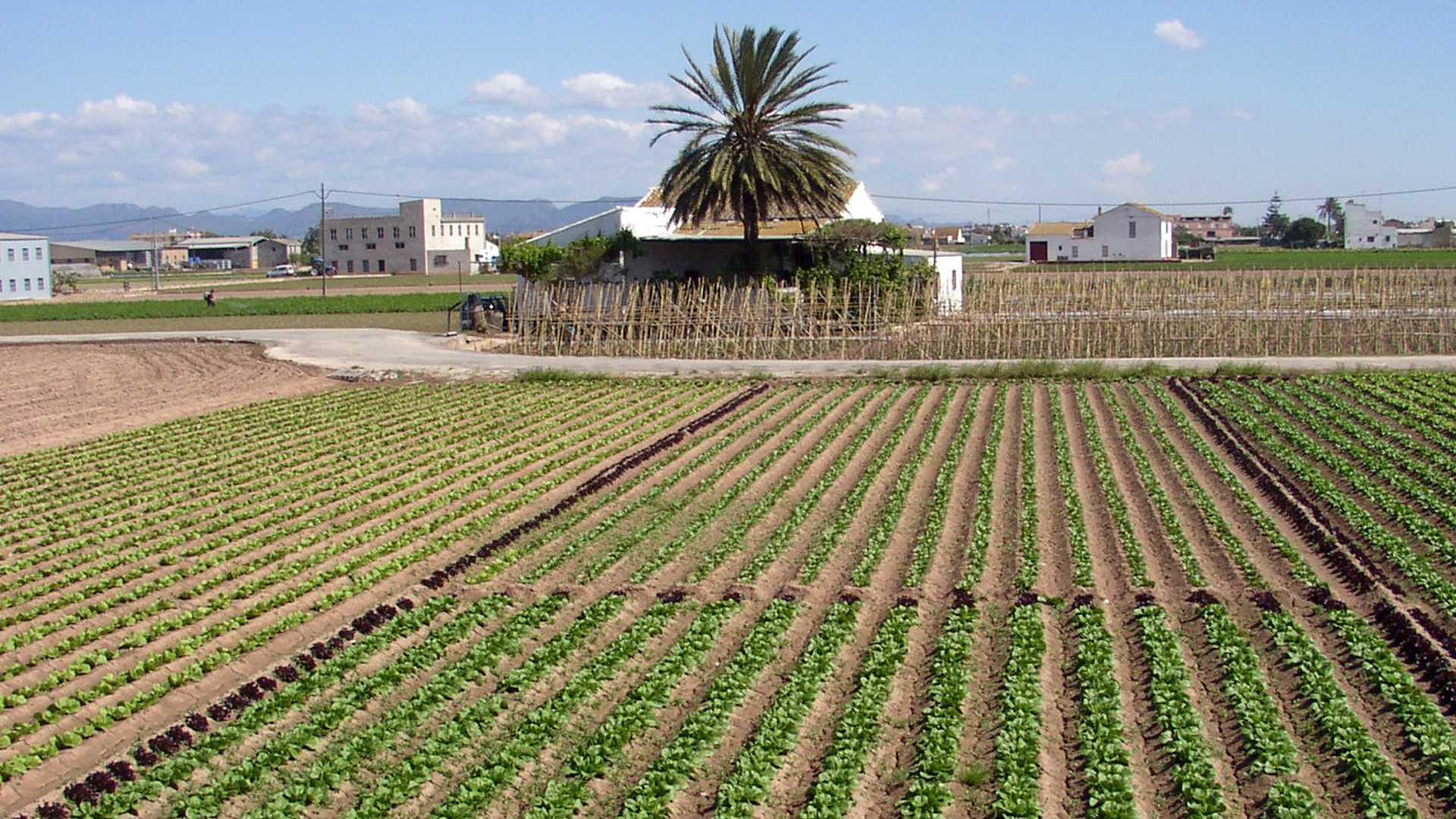 gärten von valencia