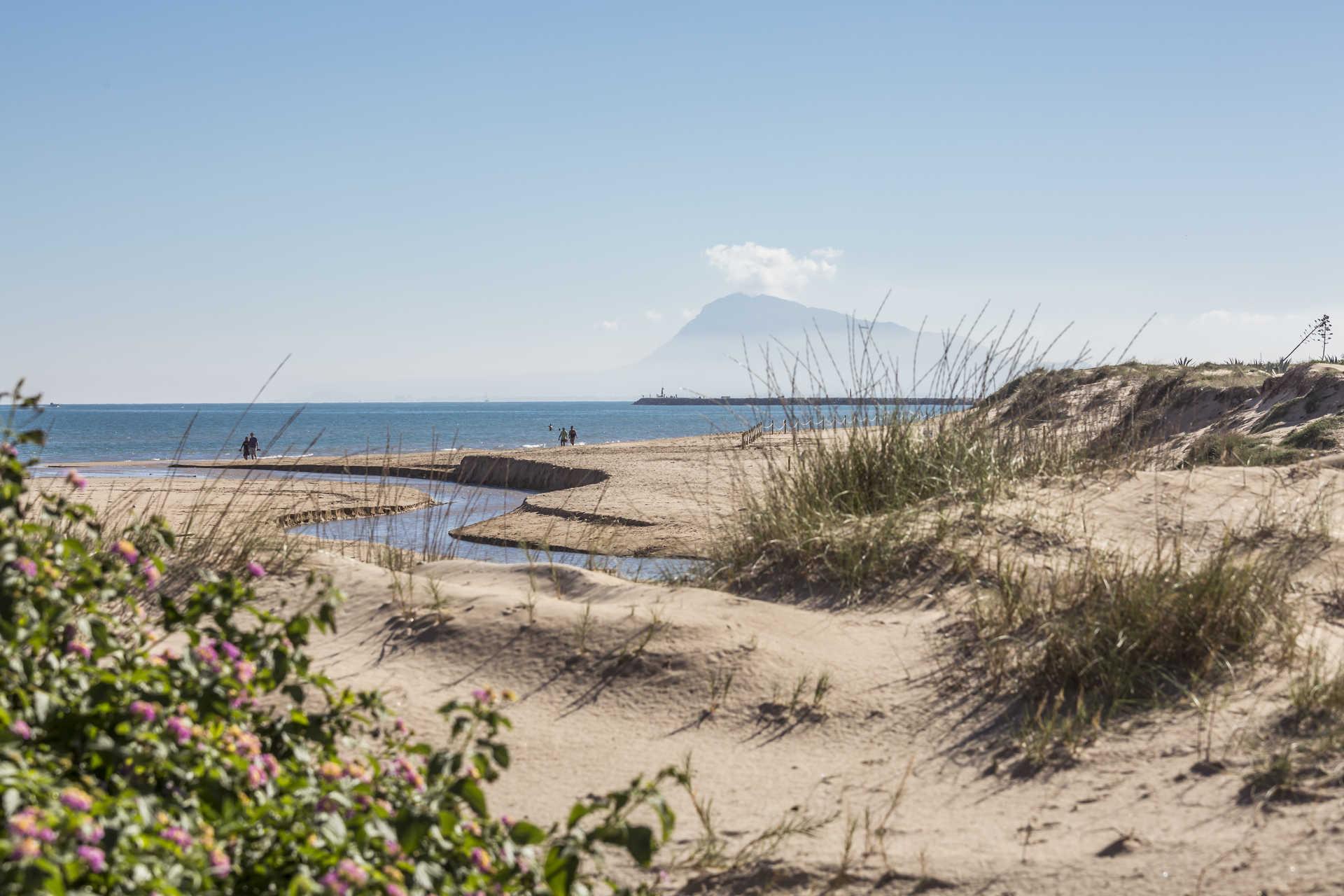 Strand Terranova-Burguera