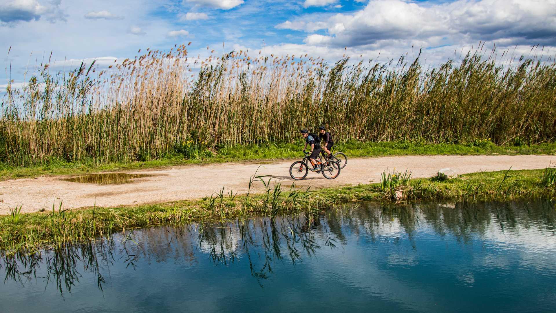E-Bike Nature Tour