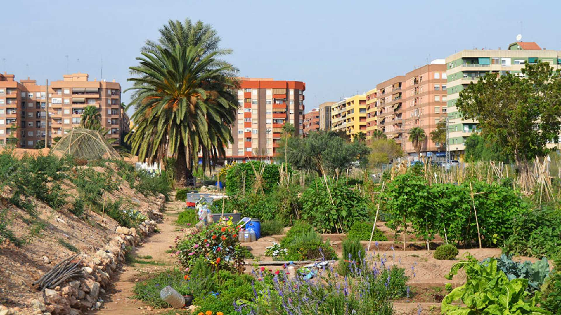 Benimaclet: poble i barri