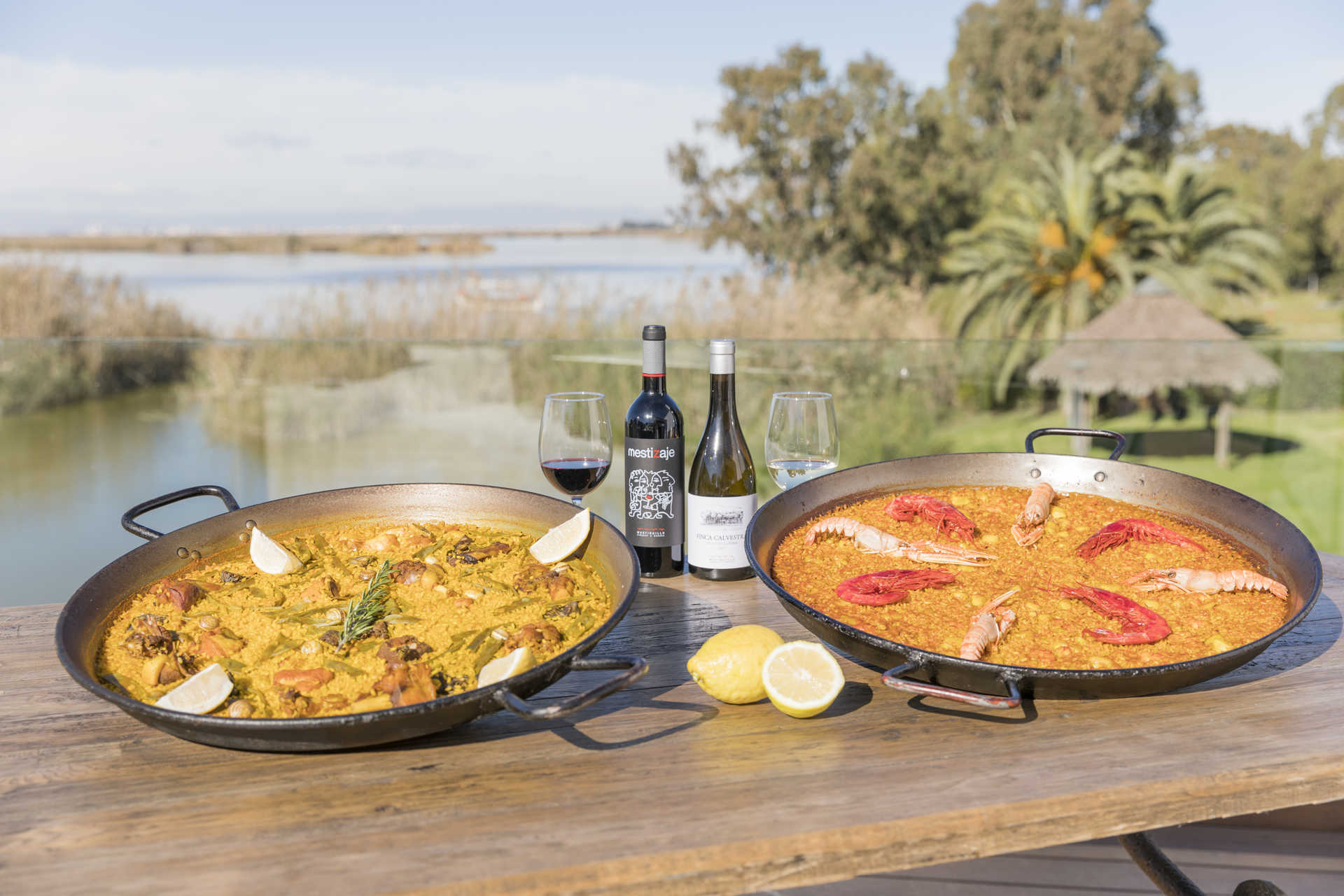 Paella y Arroces