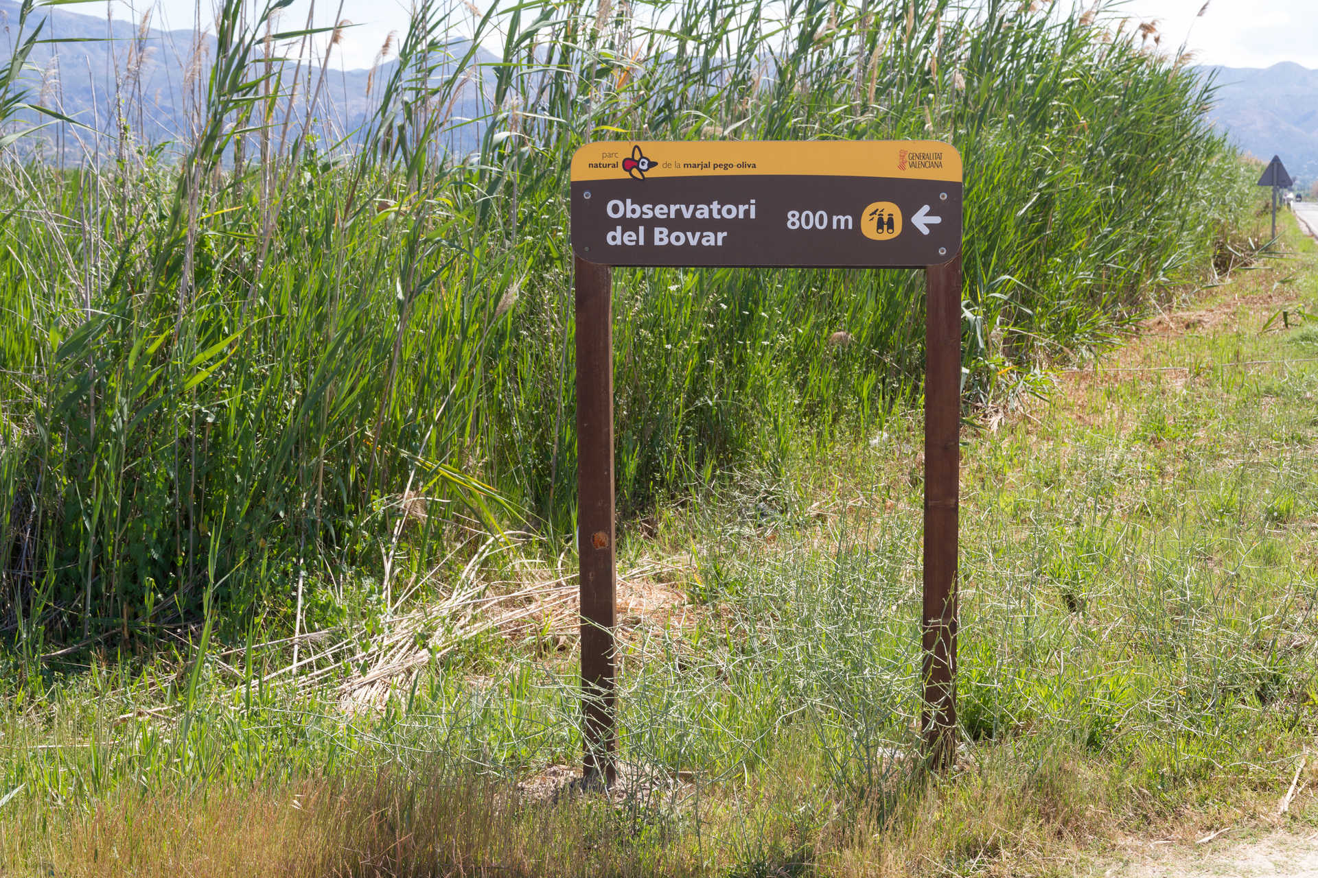 The Pego-Oliva Marshlands Nature Park