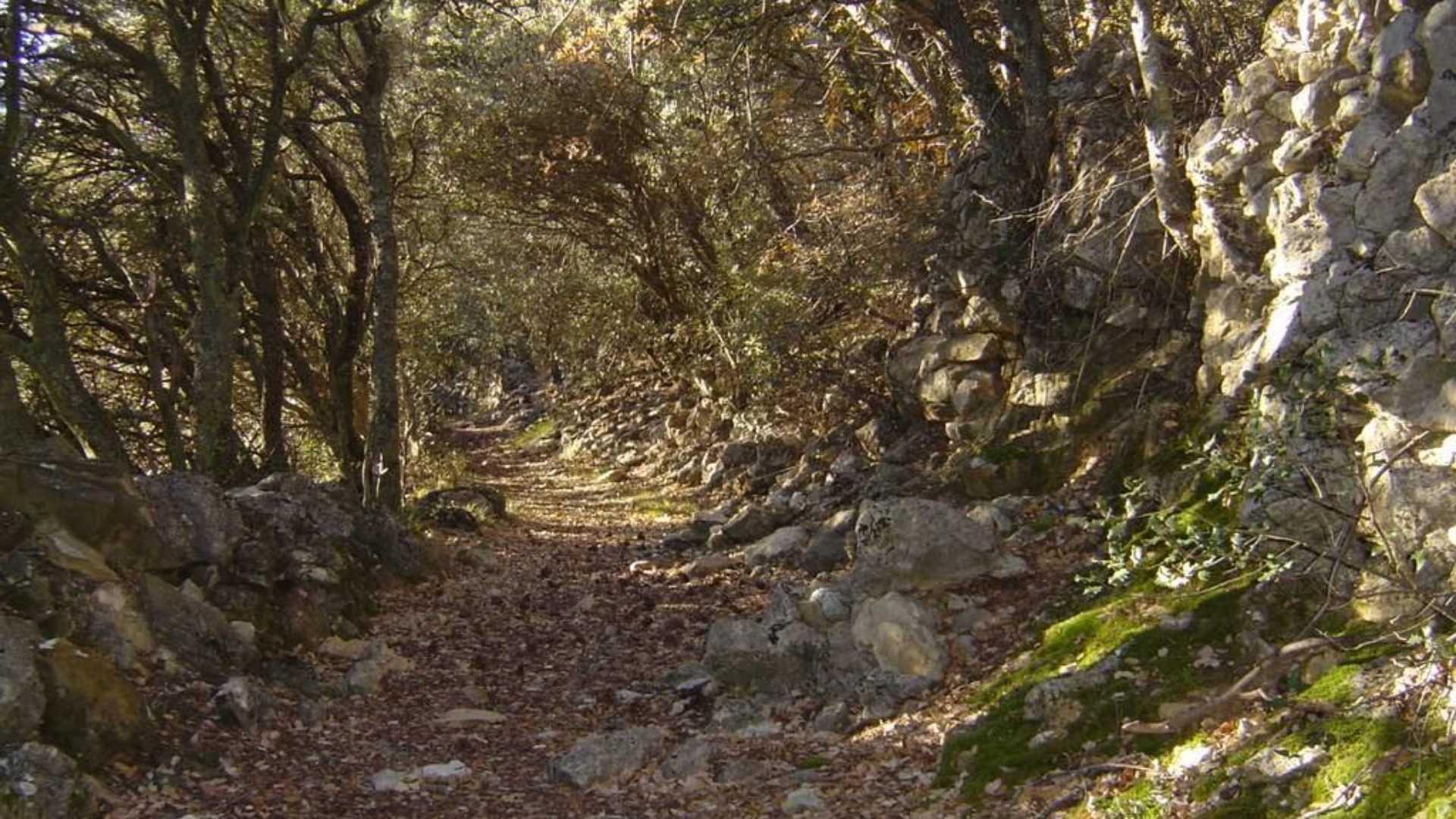 """Caminos de piedra: """"La Parreta"""""""