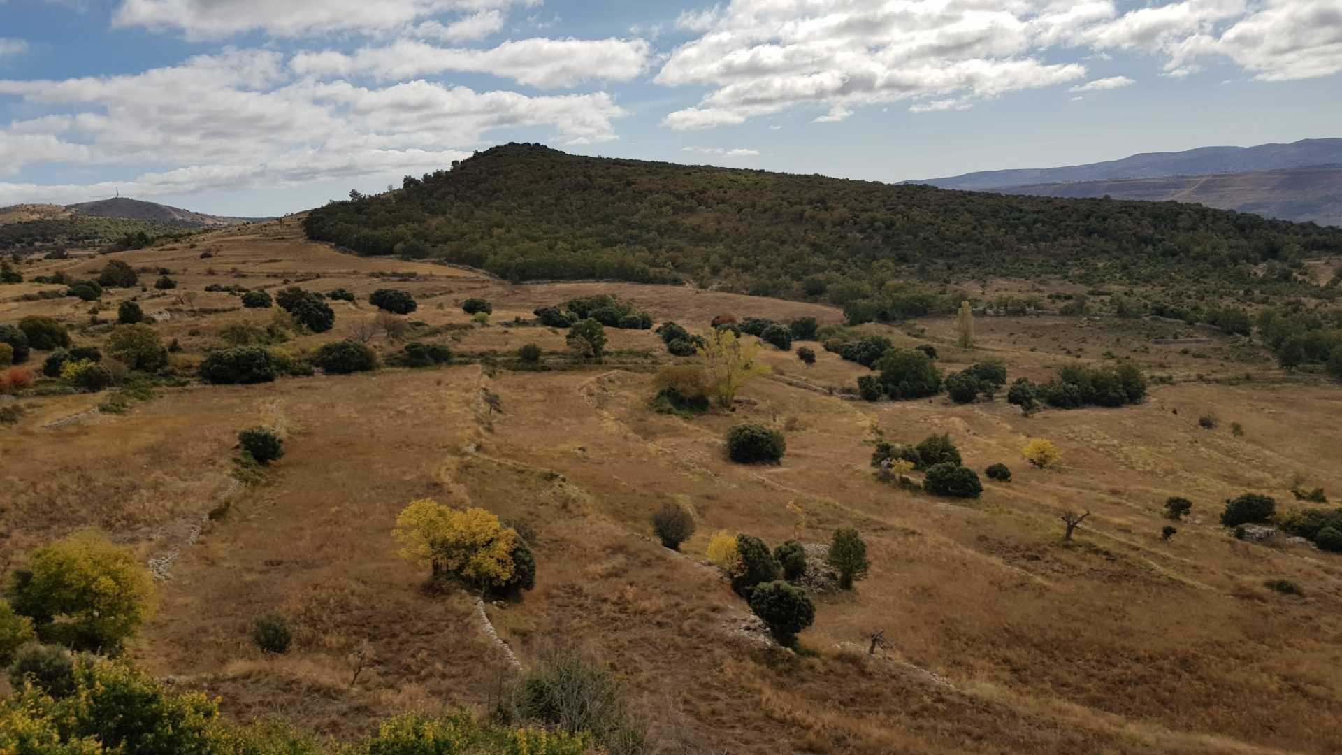 Abrigos prehistóricos de Morella La Vella