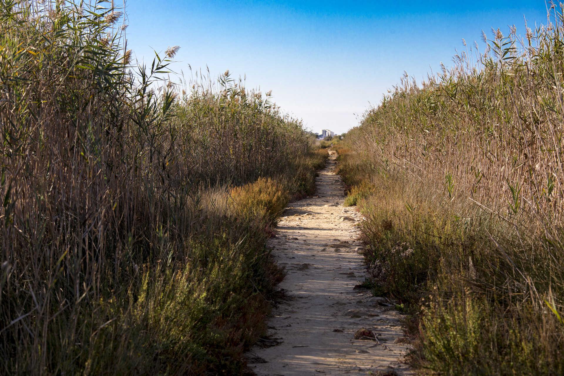 El Parc Natural de Cabanes i Torreblanca