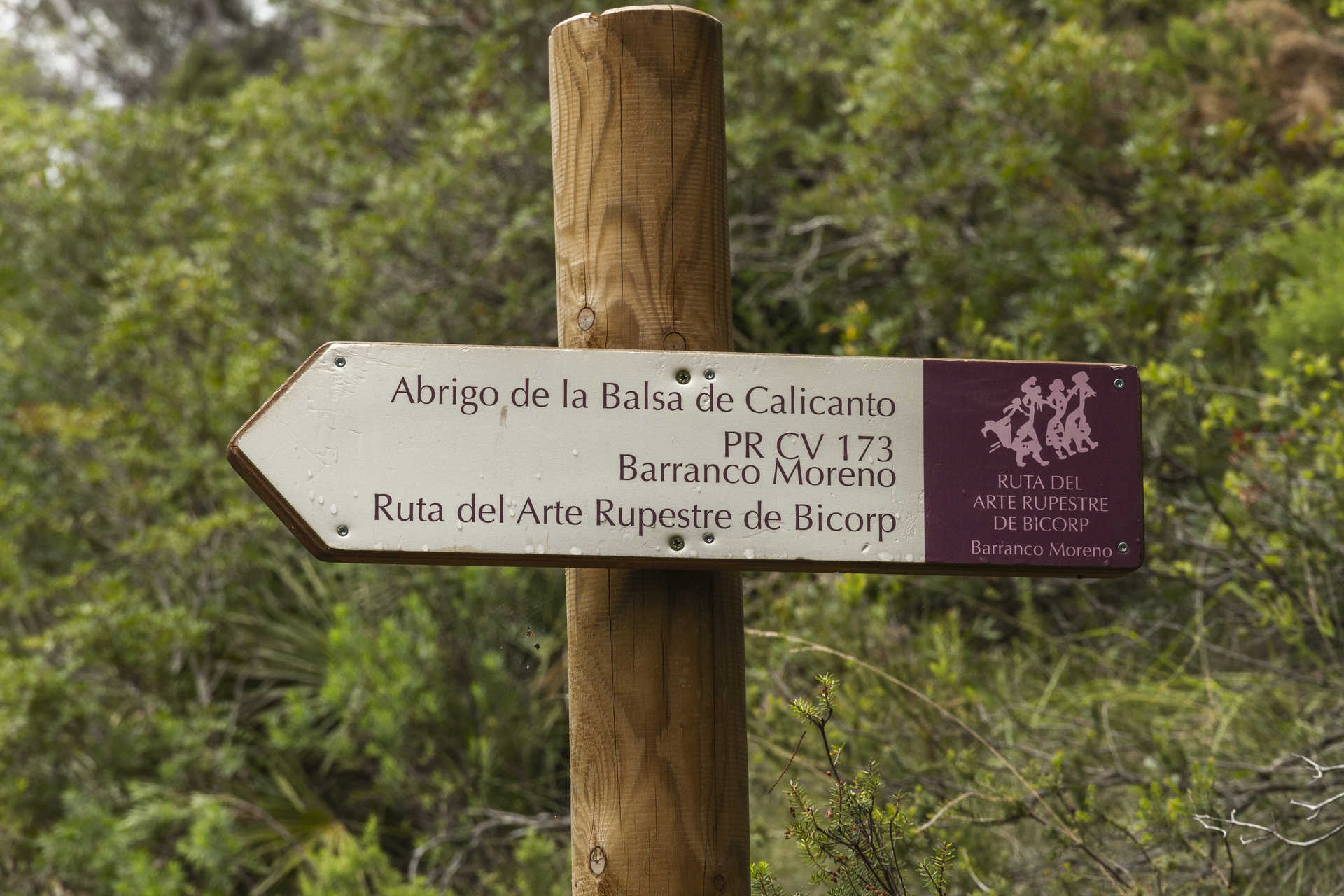 Barranco Moreno
