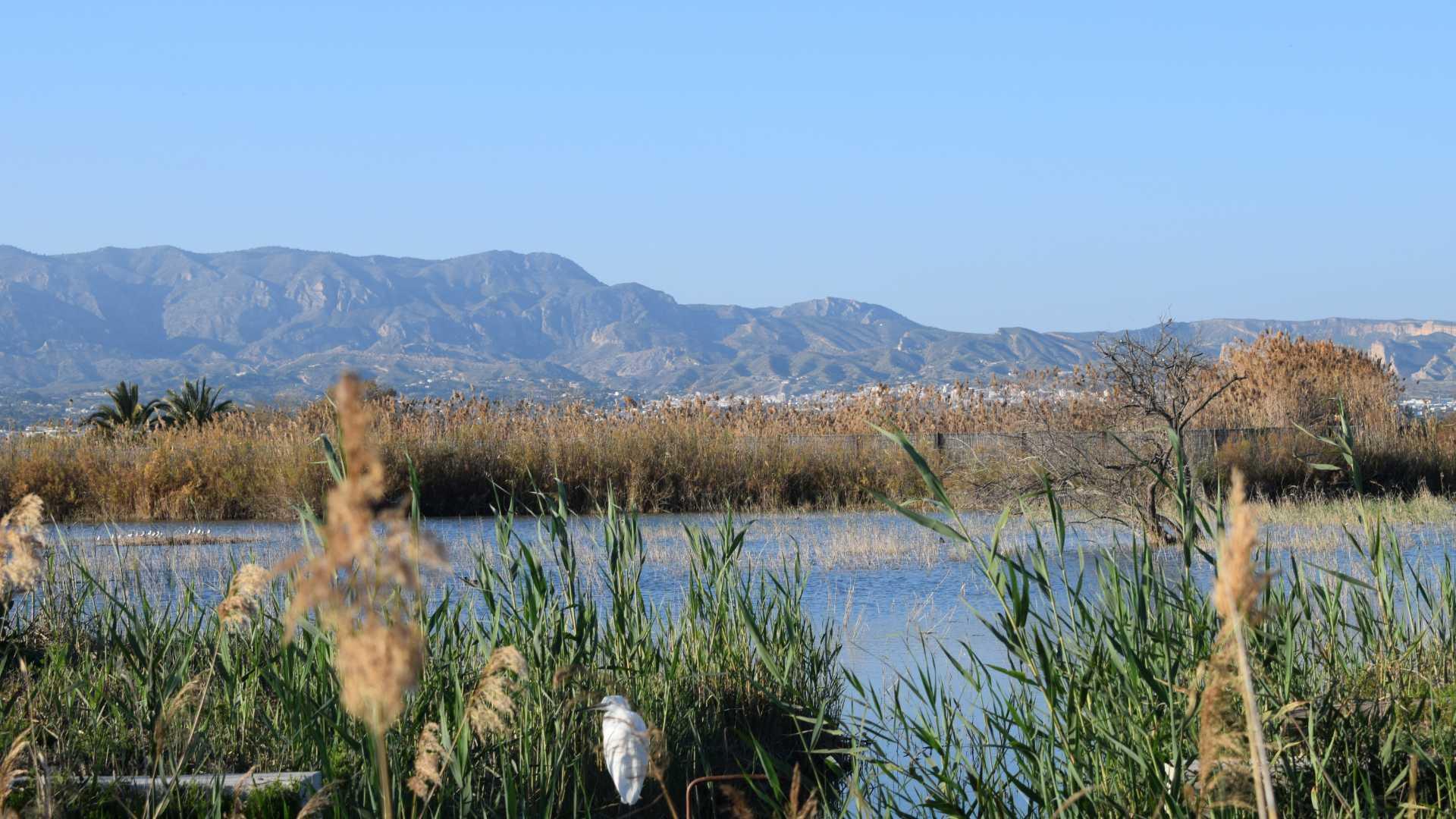 natural park el hondo,