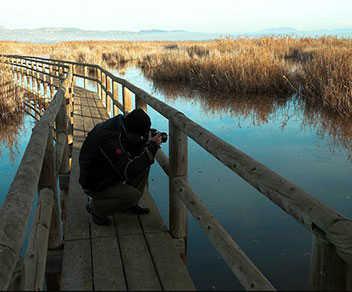 Parque Natural El Hondo