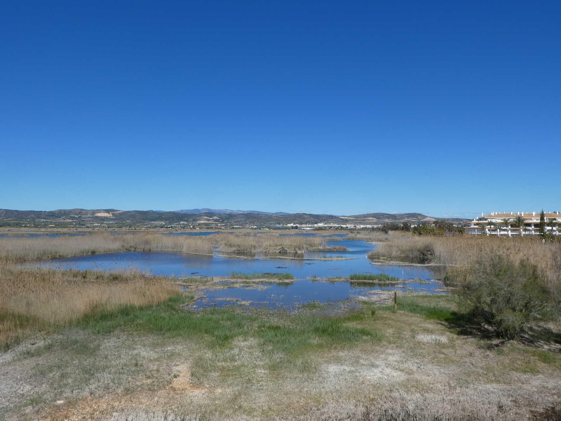 De Peníscola  a Castelló de la Plana
