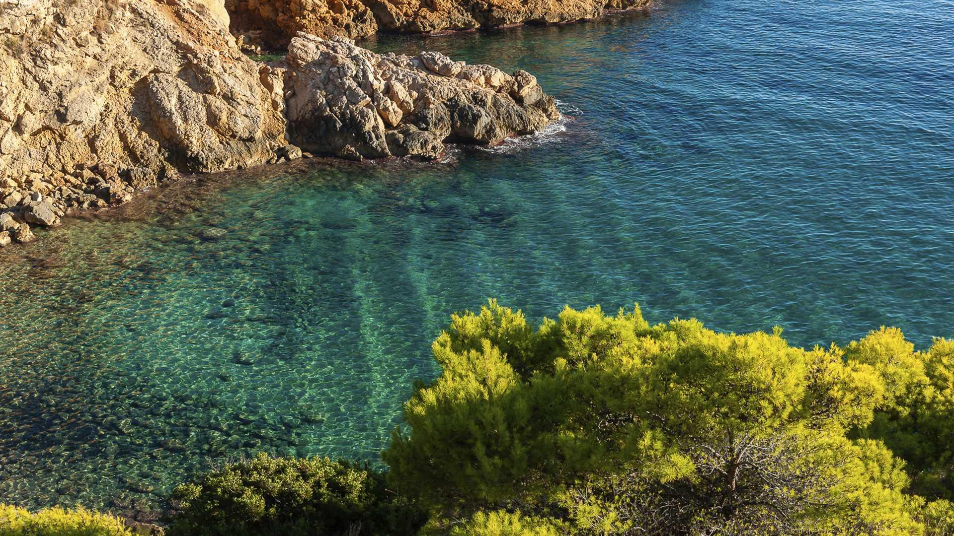 Un día de buceo en familia por la Costa Blanca para descubrir secretos mediterráneos