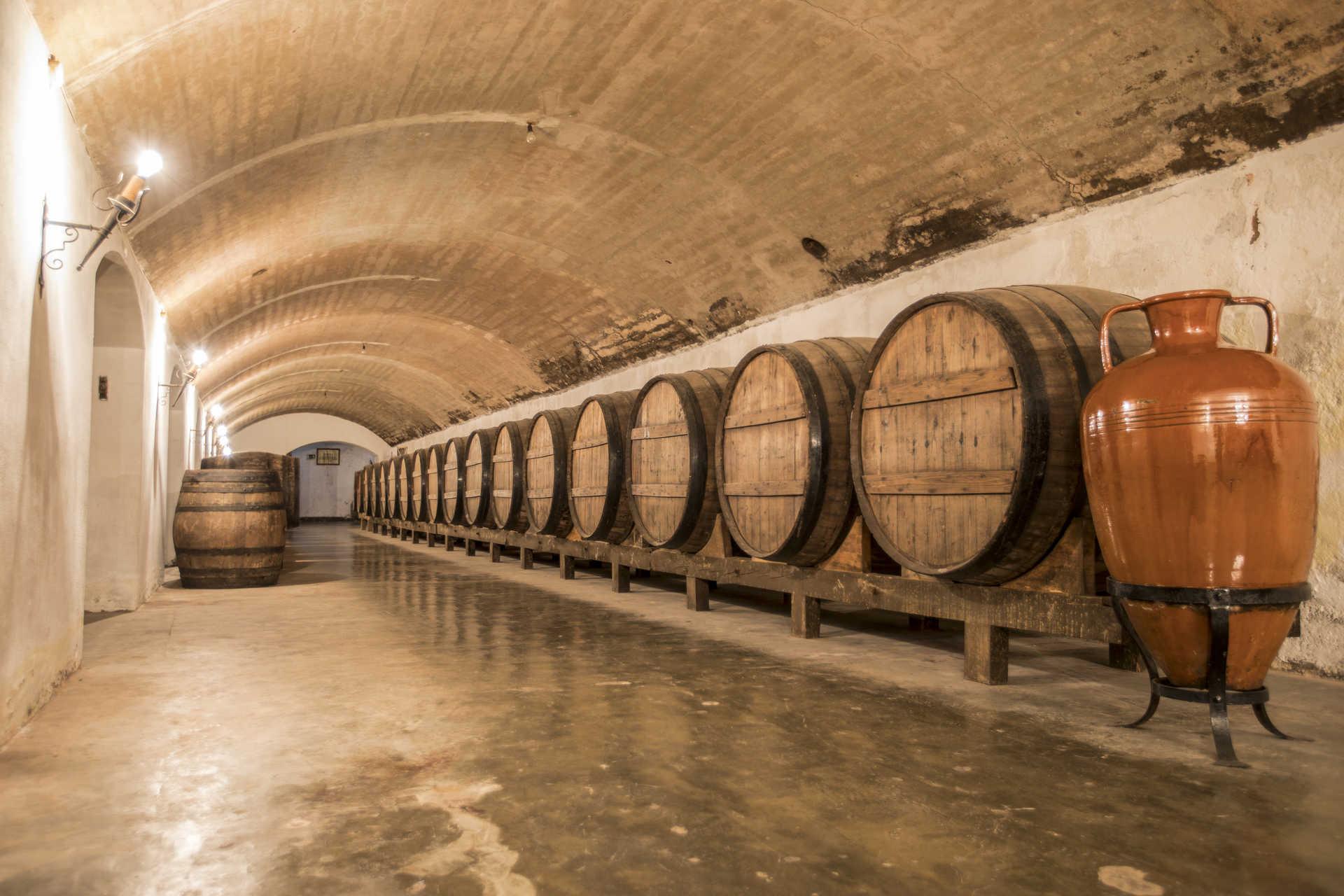 Museum Und Weinkeller Der Karmeliter