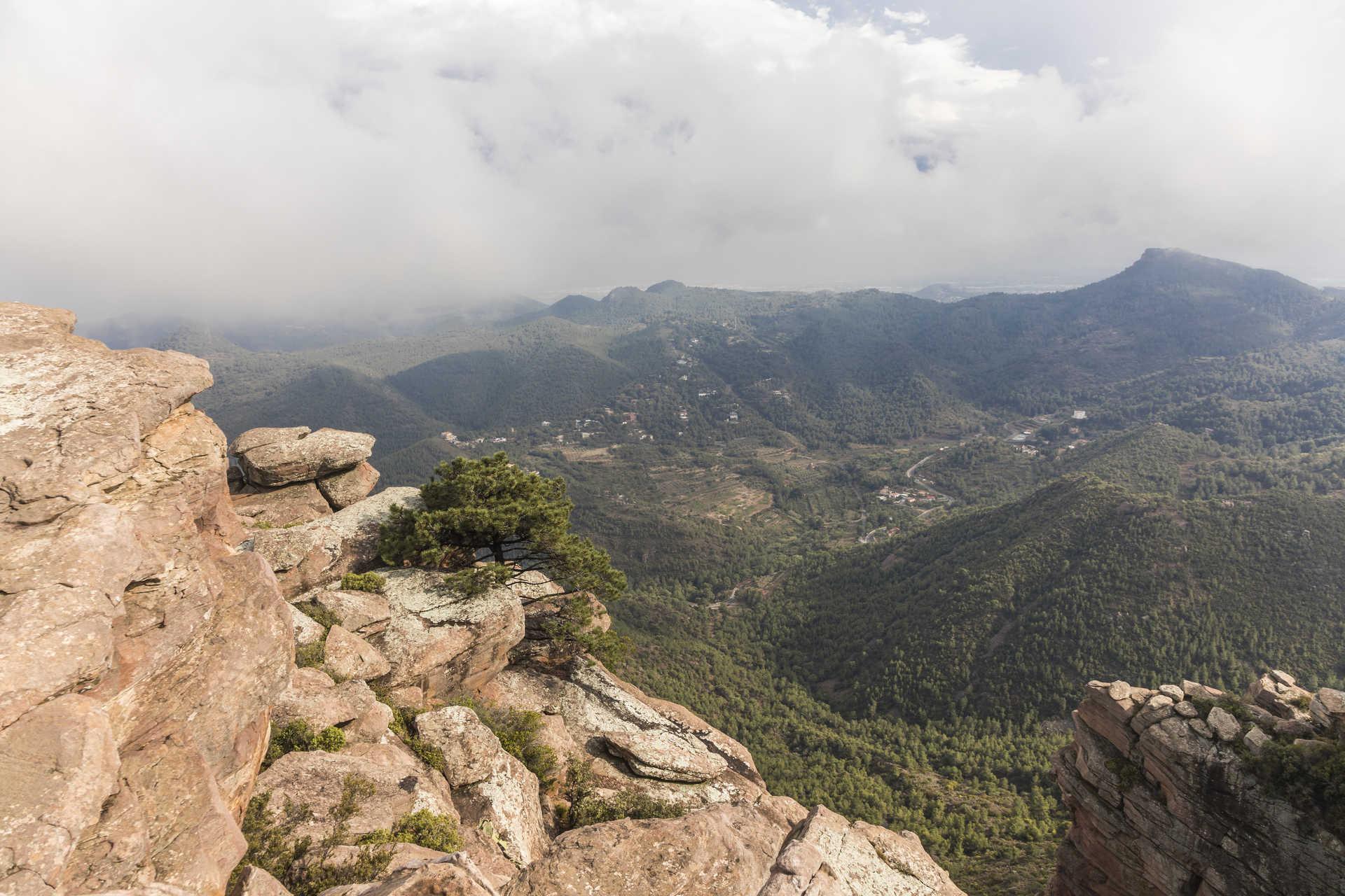 Parque Natural de la Sierra Calderona