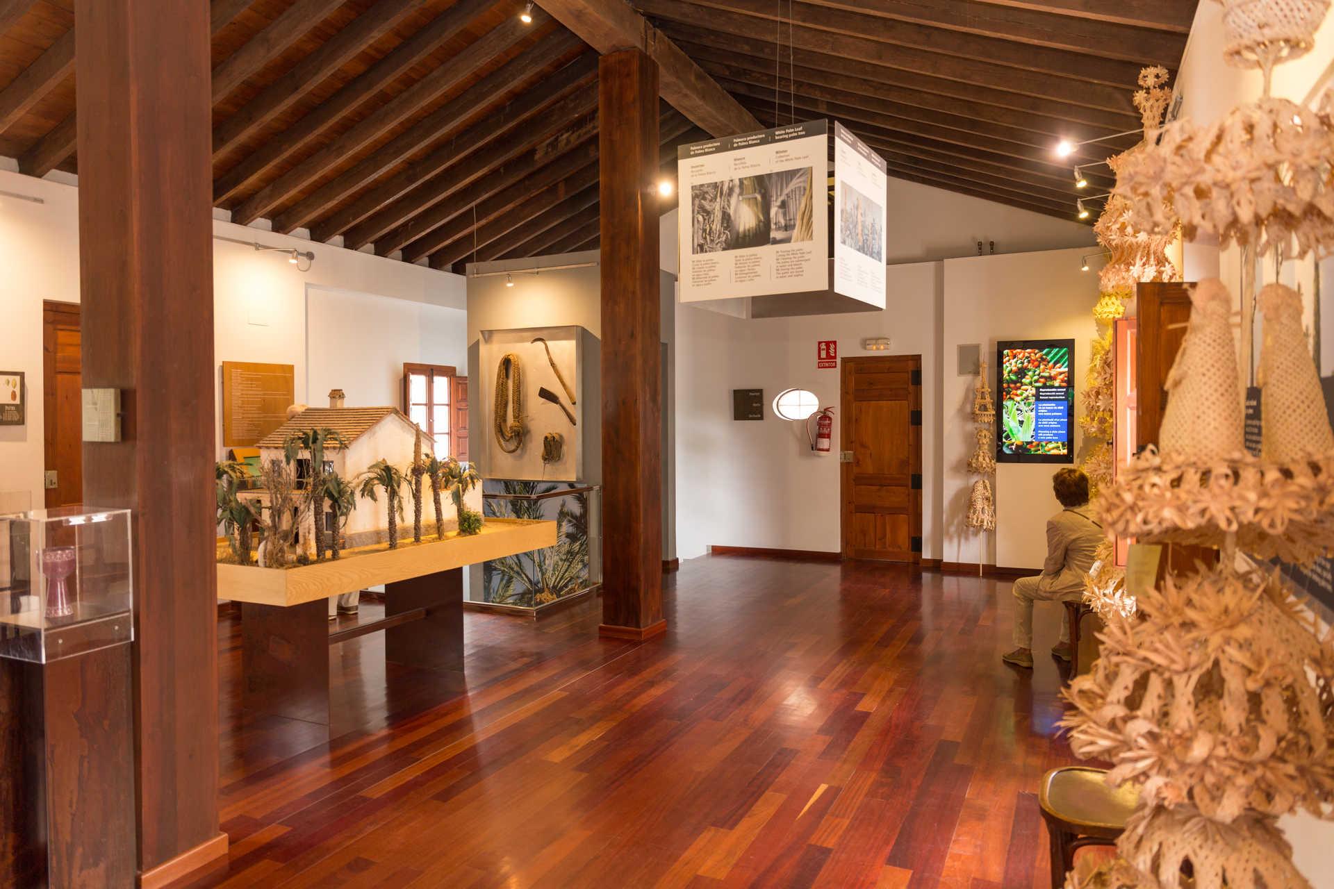 Musée du Palmeral