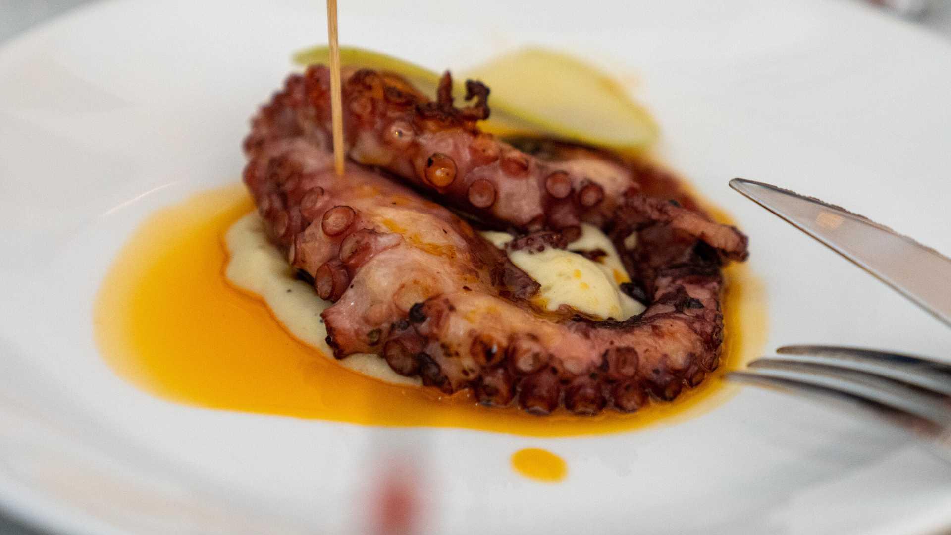 VI Jornades Gastronòmiques del polp i la sépia del Grau de Castelló
