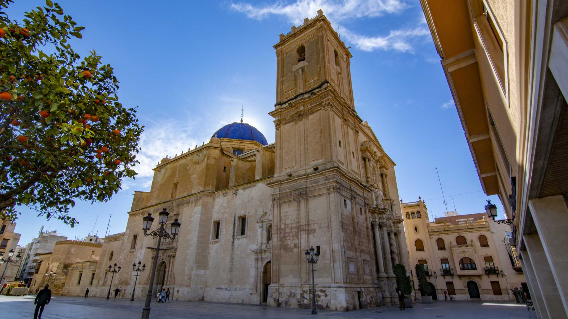 what to do in elche