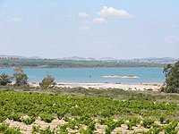 Eco-rutas en el Parque Natural de La Mata.