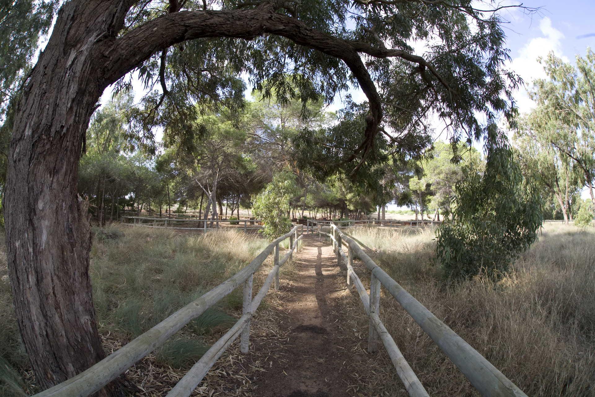 Ecoroutes in the Natural Park of La Mata .