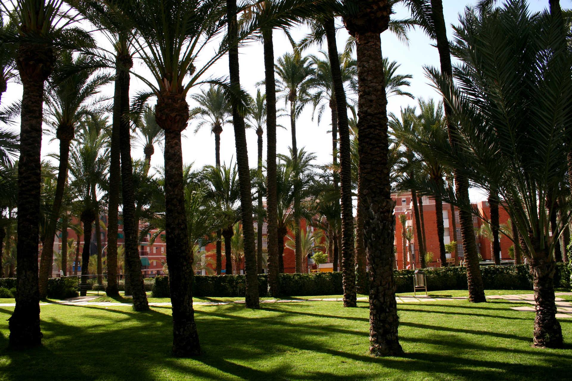 Parc El Palmeral