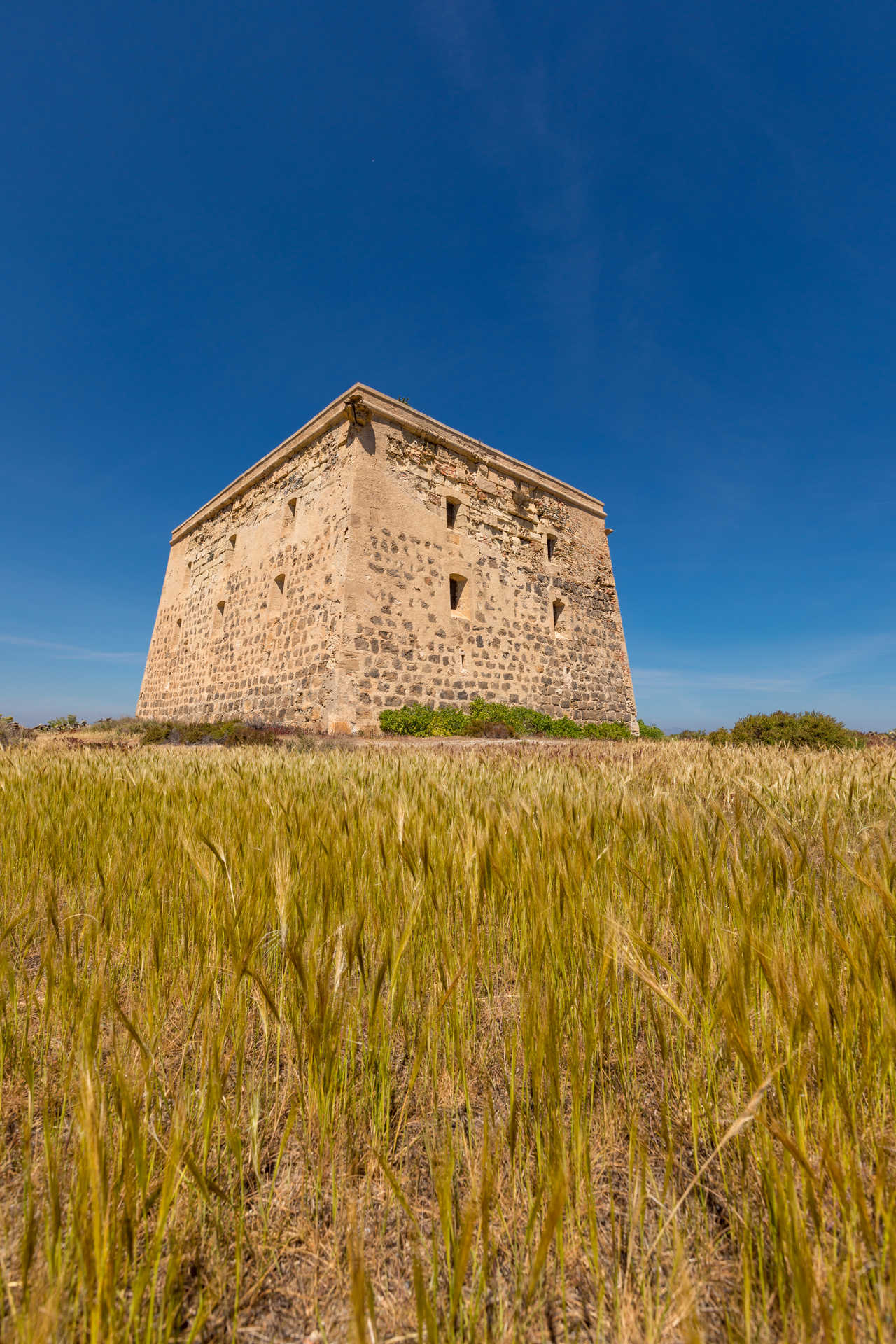 The San José Tower / Tabarca